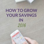 How to Grow Your Savings in 2016